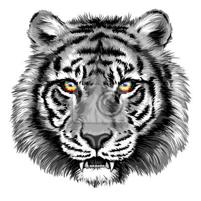 Image Tigre puissant avec des yeux brillants