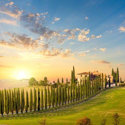 Image Toscane au coucher du soleil - campagne avec arbres et maison