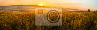Image Toscane, champ, blé, panorama, lever soleil