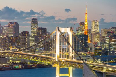 Image Tour de Tokyo Rainbow Bridge