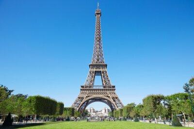 Image Tour Eiffel, ensoleillé, Été, jour, bleu, ciel, vert, champ, mars