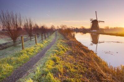 Image Traditionnel, hollandais, éolienne, Pays-Bas, sunrise