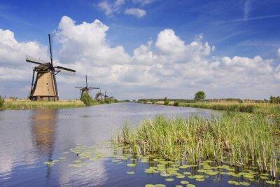 Image Traditionnel, hollandais, moulins à vent, ensoleillé, jour, Kinderdijk