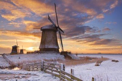 Image Traditionnel, hollandais, moulins à vent, hiver, lever soleil