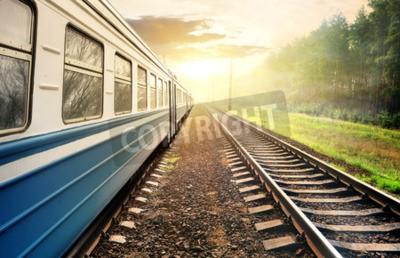 Image Train en marche à travers la forêt de pins au coucher du soleil