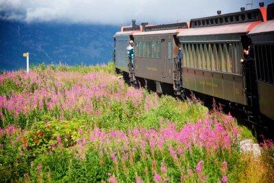 Image Trains d'Alaska