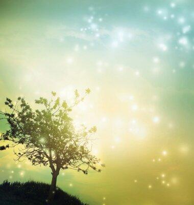 Image Tree silhouette at twilight