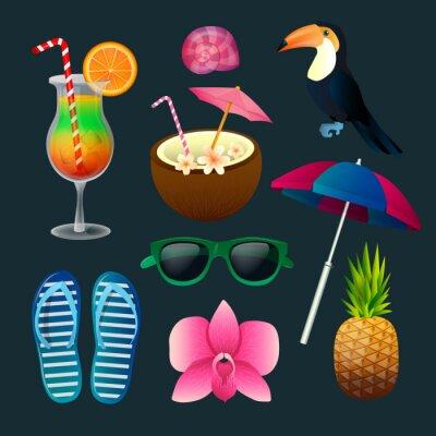 Image Tropical Elements Set: cocktails, fleurs, lunettes de soleil, oiseaux, ananas