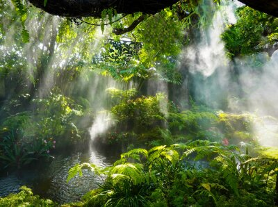 Image Tropical jungle with river and sun  beam  and foggy in the garden