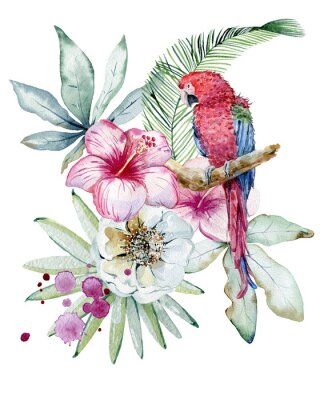 Image Tropical watercolor illustration