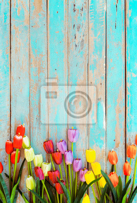 Image Tulip blossom flowers on vintage wooden background, border  frame design. vintage color tone - concept flower of spring or summer background