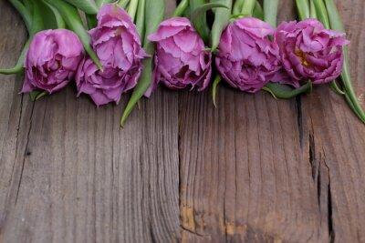 Image tulipany