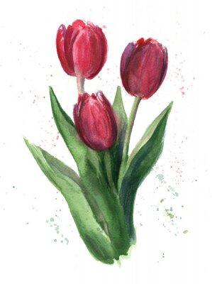 Image Tulipes, aquarelle