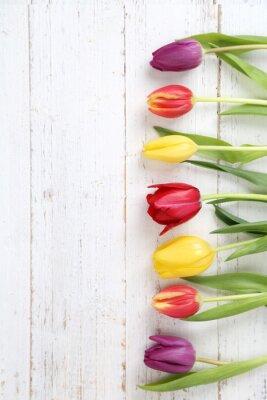 Image tulipes fond