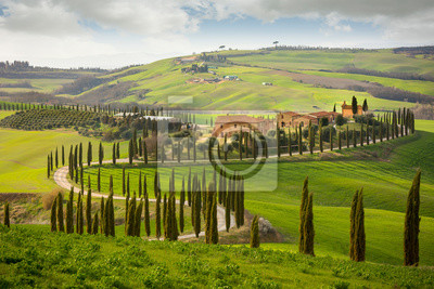 Image Tuscan hill with row of cypress trees and farmhouses. Tuscan landscape. Italy