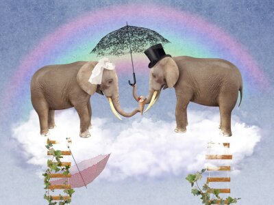 Image Two elephants in love with umbrellas.