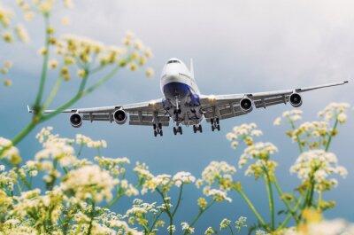 Image Un avion commercial passager survole des champs de fleurs à l'aéroport.