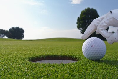 Image un homme qui pousse une balle dans un trou de golf