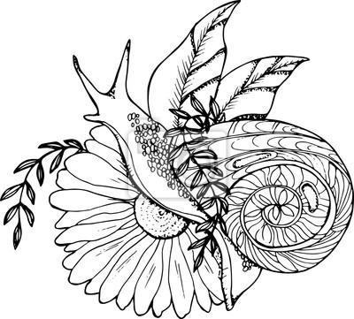 Image Une Illustration Dun Escargot Rampant à Travers Une Fleur Dessin