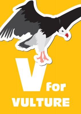 Image V pour le Vautour, un alphabet des animaux pour les enfants