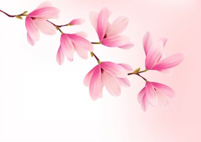 Image Valentine background avec des fleurs roses. Vector.
