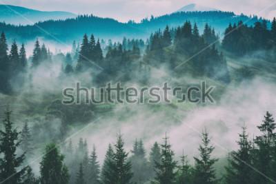 Image Vallée brumeuse des carpates après la pluie. Stylisation grunge vintage.