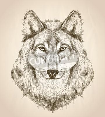 Image Vecteur croquis illustration d'une tête de loup vue de face, en noir et blanc conception de la faune vecteur.