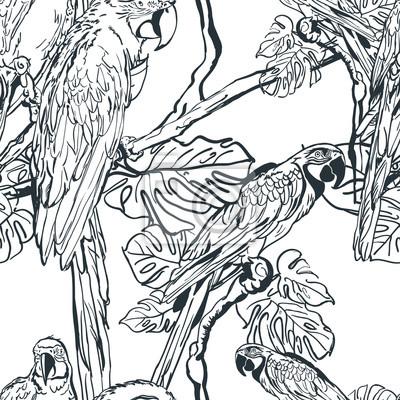 Image Vecteur Seamless Modèle Exotique Perroquet Oiseaux Arbre