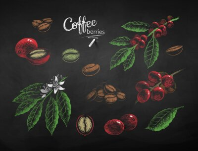 Image Vector chalk drawn set of coffee illustrations