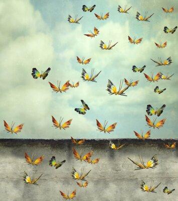 Image Vers le ciel