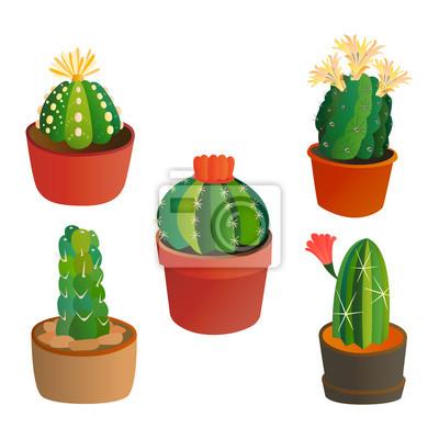 Image Vert Désert Plante Nature Dessin Animé Cactus Mexicaine