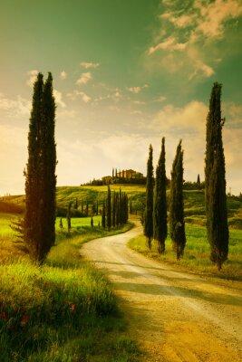 Image Vintage Tuscany countryside landscape