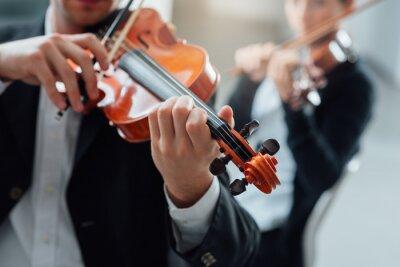 Image Violin duet performance