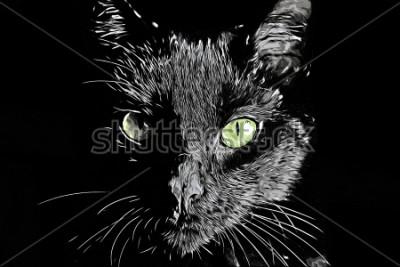 Image Visage de chat raster noir et blanc réaliste image de style de scratchboard dessiné à la main
