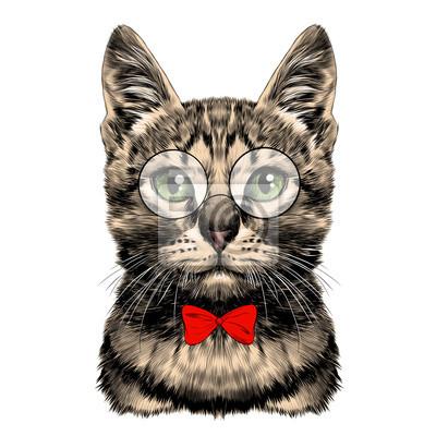 Visage De Chat Raye Avec Des Lunettes Et Cravate Rouge Cravate