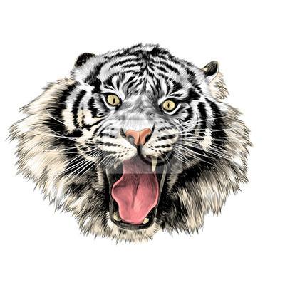 Visage de tigre blanc avec bouche ouverte croquis vecteur - Image tete de tigre ...