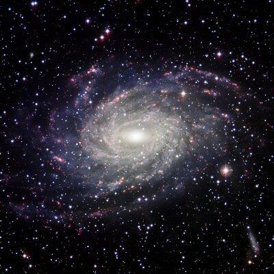 Image Voir le système Galaxy isolé Éléments de cette image fourni par la NASA