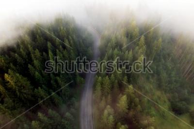 Image Vue estivale de la route de montagne