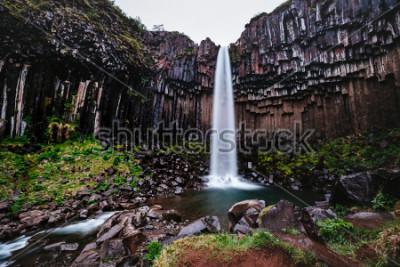 Image Vue imprenable sur la cascade de Svartifoss. Image panoramique du magnifique paysage naturel. Attraction touristique populaire. Emplacement parc national de Skaftafell, glacier de Vatnajokull, Islande