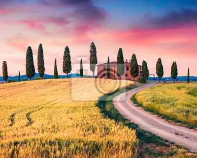 Image Vue toscane typique avec ferme et cyprès. Vue estivale colorée de la campagne italienne, vallée du Val d'Orcia, emplacement de Pienza. Beauté de fond de concept de campagne.