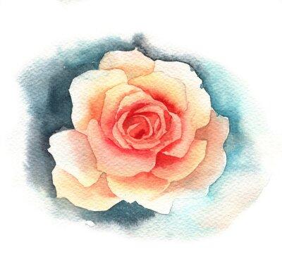 Image Watercolor rose