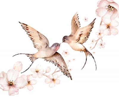 Image Watercolor spring flying swallows isolated and blossom flowers on white background