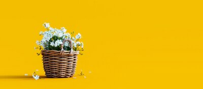 Image White flowers in wooden basket on yellow spring background 3D Rendering