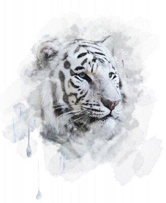 Image White Tiger