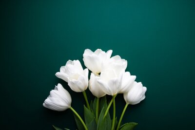 Image White tulips on green background top view. Happy spring Holidays. Valentine's day. Birthday. Women's day. Easter. Flower wedding card, invitation, banner
