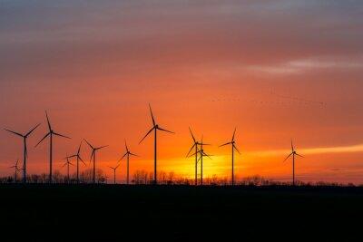 Image Windräder dans la nature avec Vogelschwarm im Sonnenuntergang