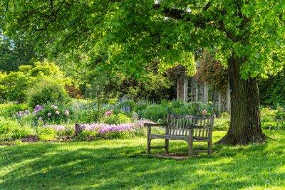 Image wooden bench at flower garden park