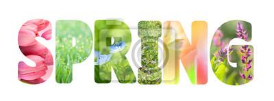 Image Word Spring avec des images de nature colorée à l'intérieur des lettres,