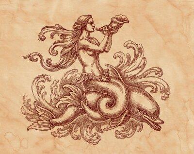 Image Морская богиня на дельфине, графика. Рисунок на коричневой бумаге тушью.