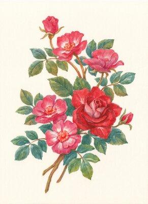 Image Букет с цветами шиповника, акварель.
